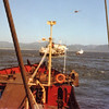 Dredge Biddle,Colision Columbia Bar,Salvage Chief Assit and towed To Portland,1977,