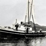Moira  Later Jeanie Built 1917 Tacoma Wash  Libby Mcneil Libby  Whiz Fish  San Juan Packing  New England Fish  Roger Loherer  Robert File